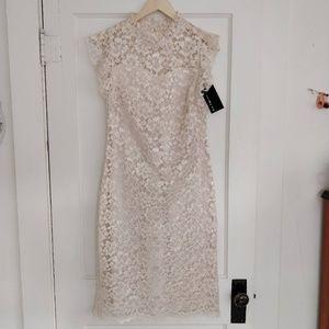 Enfocus Studio Lace Illusion Sheath Dress NWT
